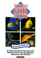 Video Fish Book, Vol. 1